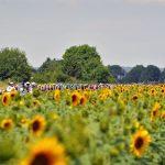 Sfeerfoto Tour de France 2017