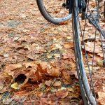 Winter wielrennen